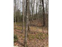 Home for sale: Lot 84 Black Oak Dr., Sapphire, NC 28774