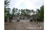 Home for sale: 293 N.W. Bayou Rd., Mayo, FL 32066
