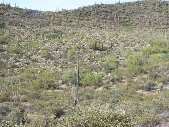 45043 N. Cottonwood Canyon Rd., Cave Creek, AZ 85331 Photo 6