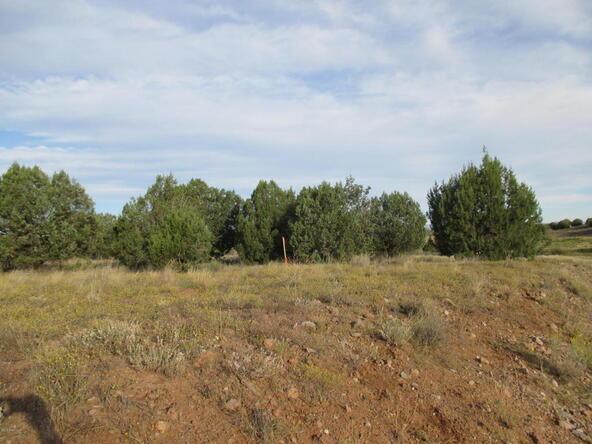 8451 W. Dillon Wash Rd., Prescott, AZ 86305 Photo 23