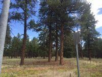 Home for sale: 0000 W. Brannigan Park Rd., Bellemont, AZ 86015