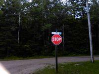 Home for sale: 807 Cadotte St., Mackinaw City, MI 49701