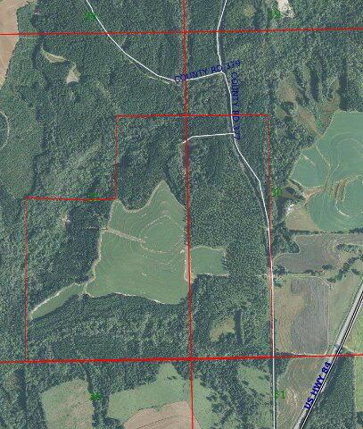 1 County Rd. 377, Opp, AL 36467 Photo 3