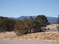 Home for sale: Seclusion Ct., Sandia Park, NM 87047