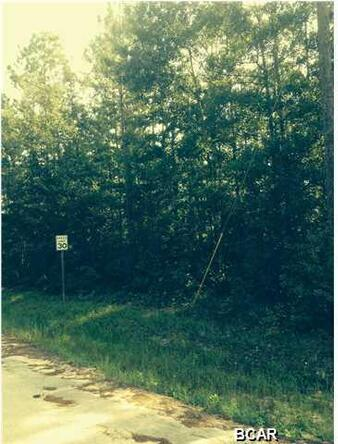 Lot 8 Lot 8 Waverly Rd., Youngstown, FL 32466 Photo 9