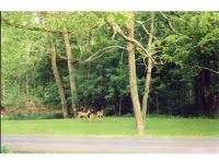 Home for sale: Lower Grants Creek Rd., Rising Sun, IN 47040