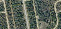 Home for sale: 0 Deltona Blvd., Chipley, FL 32428