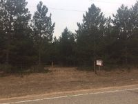 Home for sale: Lot 1 County Rd. M, Adams, WI 53910