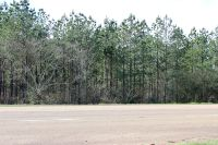 Home for sale: Tbd Hwy. 171, Hornbeck, LA 71439