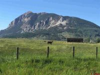 Home for sale: 1192 Hidden River Rd., Crested Butte, CO 81224