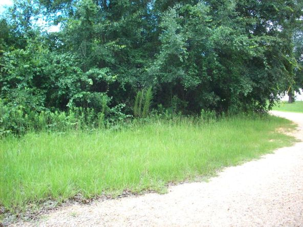 100 Rabbit Run, Atmore, AL 36502 Photo 7