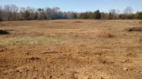 Home for sale: 38.13 Acres Hwy. 411, Englewood, TN 37329