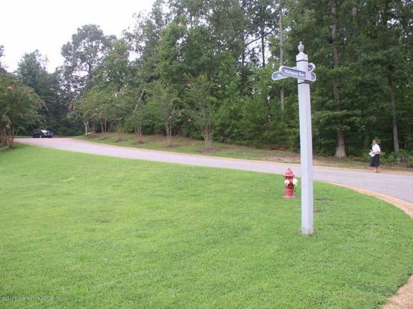 101 Sugar Bush, Williamsburg, VA 23188 Photo 42