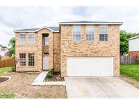 Home for sale: 816 White Dove Dr., Arlington, TX 76017