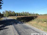 Home for sale: 2 County Rd. 60, Pisgah, AL 35765