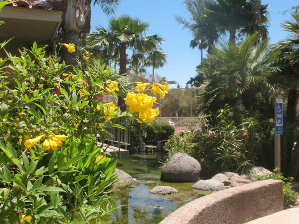 8787 E. Mountain View Rd., Scottsdale, AZ 85258 Photo 10