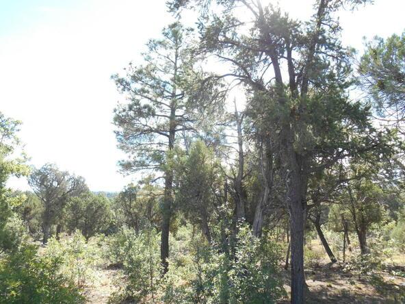 1821 S. Ridge Crest Dr., Show Low, AZ 85901 Photo 6