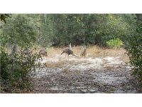 Home for sale: Deer Rd., Frostproof, FL 33843