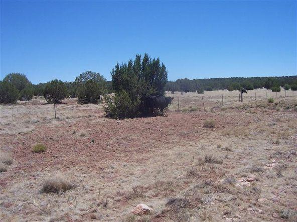 56731 N. Potrero Parkway, Seligman, AZ 86337 Photo 12