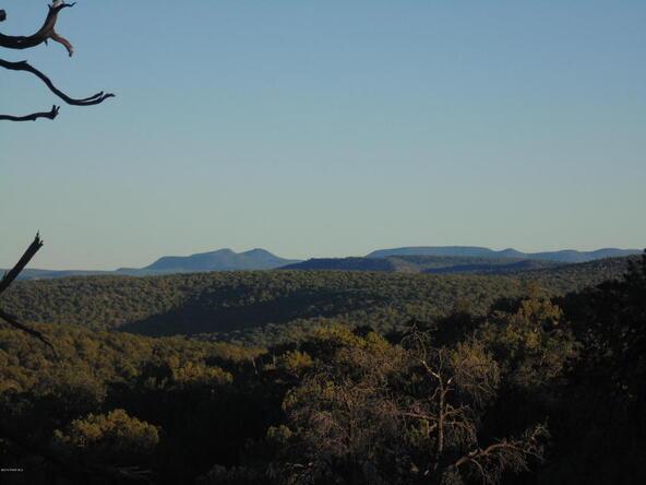 496 High Sierra, Seligman, AZ 86337 Photo 2