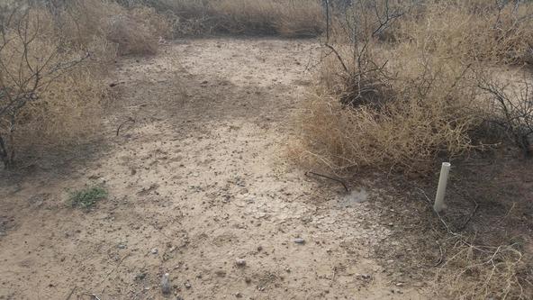 12802 Green Cactus, Tucson, AZ 85735 Photo 5