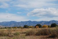 Home for sale: 18.8 Acres, S. Price Ranch Rd., Pearce, AZ 85625