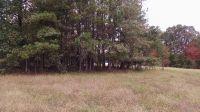 Home for sale: 1686 Castle Rock Farm Rd., Pittsboro, NC 27312