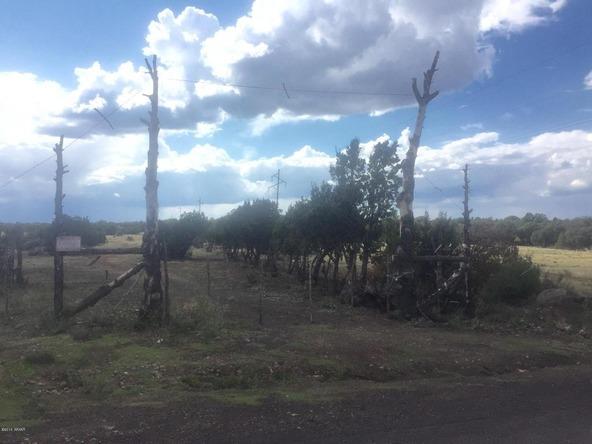 850 Cinder Pit Rd., Show Low, AZ 85901 Photo 39