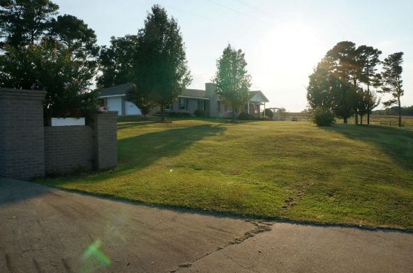6491 County Rd. 49, Ranburne, AL 36273 Photo 5