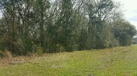 Home for sale: Lot Moultrie Hwy., Barney, GA 31625