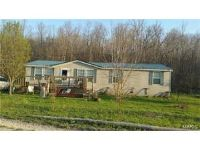 Home for sale: 742 County Rd. 4283, Salem, MO 65560