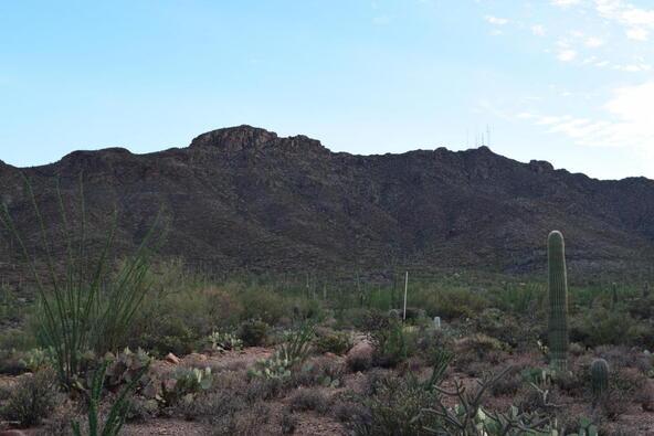 6tbd W. Sweetwater, Tucson, AZ 85745 Photo 6