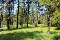 Home for sale: Lot 4 W. Diamond Heights, Oldtown, ID 83822