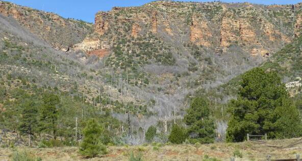 220 W. Zane Grey Cir., Christopher Creek, AZ 85541 Photo 49