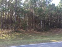 Home for sale: 0 225 County Rd., Lawtey, FL 32058