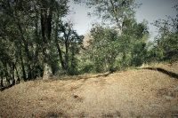 Home for sale: 1213 Riverwood, Santa Ysabel, CA 92070