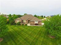 Home for sale: 417 Covington Dr., Waterloo, IL 62298