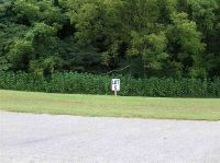 Home for sale: Lot 5 Phoenix Dr., Fountain Run, KY 42133