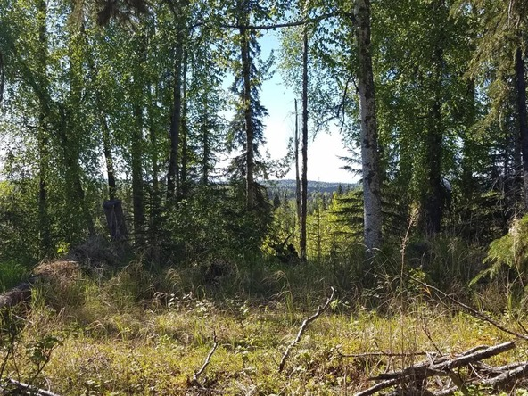 37825 Country Woods Cir., Soldotna, AK 99669 Photo 15