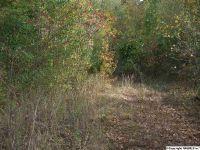 Home for sale: Scott St., Scottsboro, AL 35768