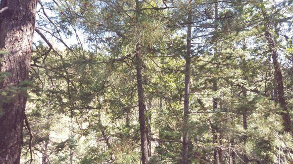2655 E. Preddy, Prescott, AZ 86305 Photo 31