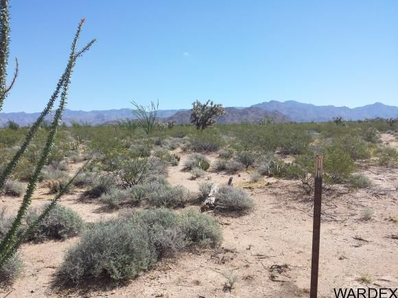1008 S. Dale Evans Rd., Yucca, AZ 86438 Photo 2