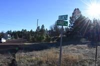 Home for sale: 5523 Turkey Run, Pinedale, AZ 85934