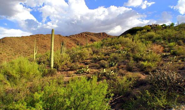4975 W. Via Scaramuzzo, Tucson, AZ 85745 Photo 13