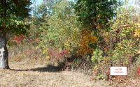 Home for sale: Lt28 Jack Groves Ln., Hayesville, NC 28904