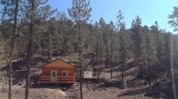 Home for sale: 187 Paul Creek Ln., Craig, MT 59421