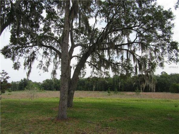 25544 Belle Helene, Leesburg, FL 34748 Photo 21