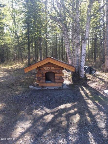 8601 Bemis Rd., Palmer, AK 99645 Photo 29