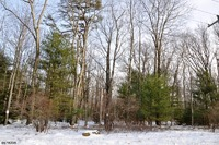Home for sale: 0 Route 390 Lot 1, Canadensis, PA 18325