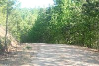 Home for sale: 331 Slick Rock, Hardy, AR 72542